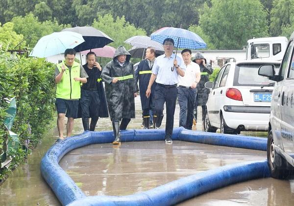 漯河市长刘尚进在察看城市防汛排涝工作